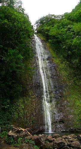 Waterfalls of Hawaii - Manoa Falls