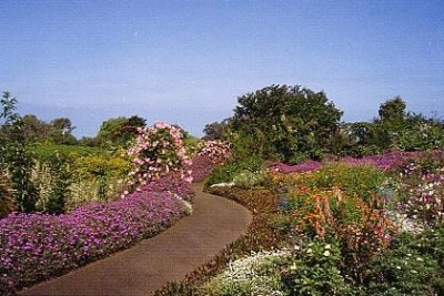 Enchanting Floral Gardens of Kula