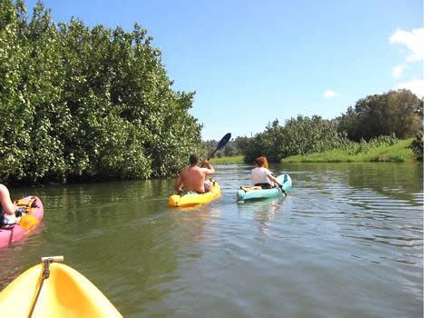 Kayaking in Hanalei River