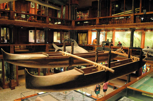 Bishop Museum - Hawaiian Hall