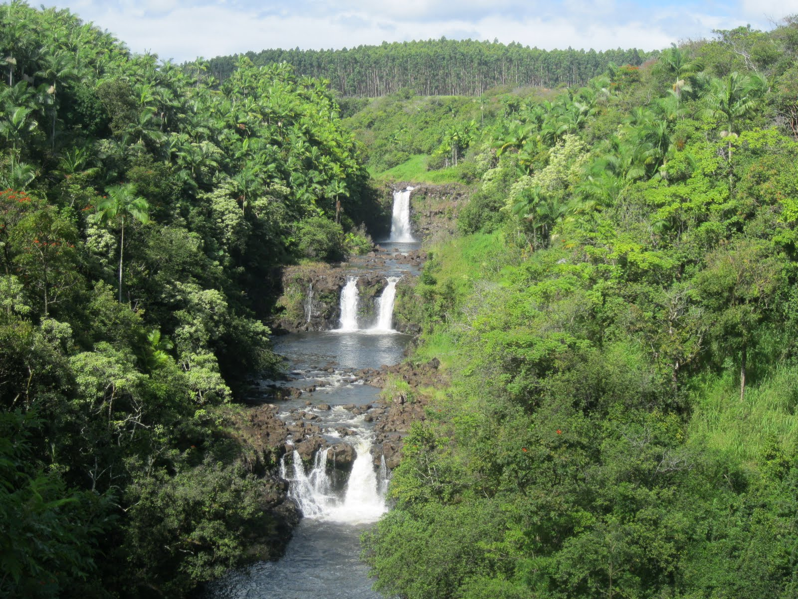 Waterfalls of Hawaii - Umauma Falls in World Botanical Gardens