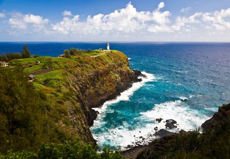 Discover Hawaii S Wildlife At Kilauea Point National