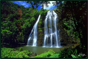 Waterfalls of Hawaii - Opaeka Falls