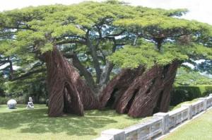 The Contemporary Museum Honolulu