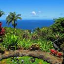 A pond with a view - Garden of Eden Botanical Arboretum