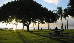 Kapiolani Park's Ocean Front