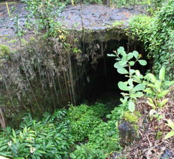 Kaumana Caves near Hilo