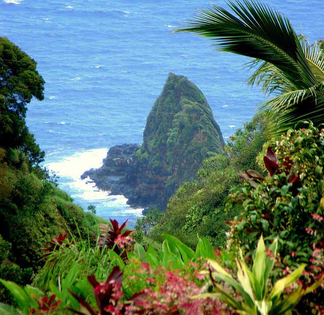 Garden Of Eden Landscape: Garden Of Eden Botanical Arboretum
