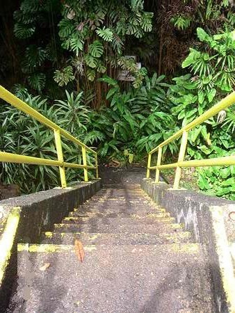 Steep stairs leading to the Kaumana Caves