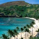 Top Hawaii Snorkeling Spots - Hanauma Bay, Oahu