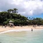 Top Hawaii Snorkeling Spots - Kapiolani Park Beach, Oahu