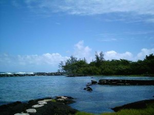 Richardson Beach Park Hilo Hawaii
