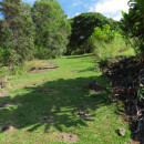 Amy B. H. Greenwell Ethnobotanical Garden