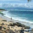 Ho'okipa Beach in Maui, Hawai
