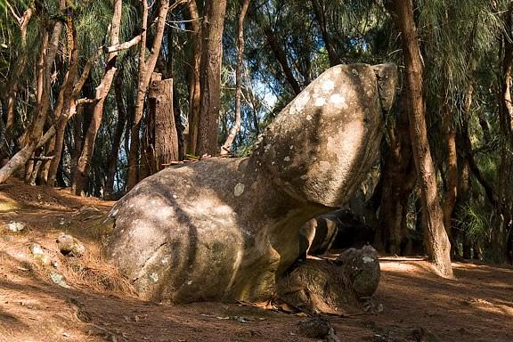 Phallic Rock - Kaule o Nanahoa