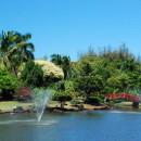 Smith's Tropical Paradise
