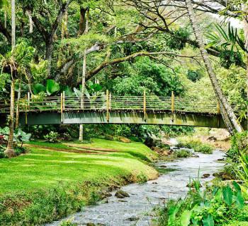 McBryde Garden - Kauai, Hawaii