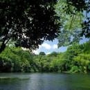 Green Lake - Kapoho, Hawaii