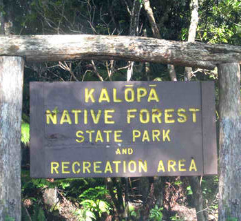 Kalopa State Recreation Area
