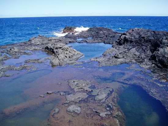 Olivine Pools - Maui, Hawaii