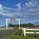 Parker Ranch - Hawaii