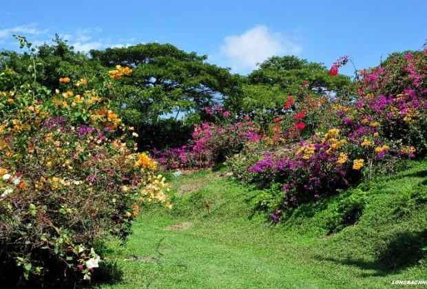 Pua Mau Place Arboretum and Botanical Garden - Hawaii