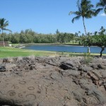 Waikoloa Beach - Petroglyphs