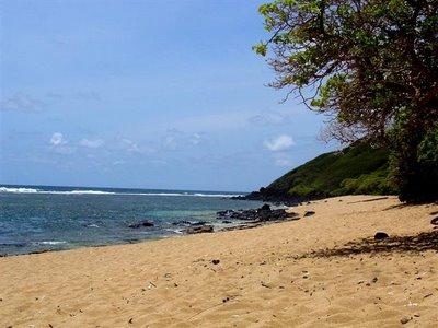 Larsen's Beach - Kauai, Hawaii