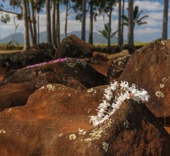 Kukaniloko Birth Site - Oahu, Hawaii