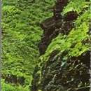 JFK Profile Rock Postcard