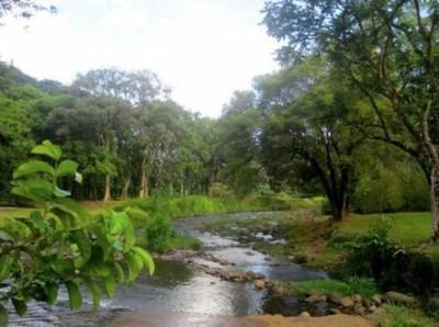 Keahua Arboretum - Kauai, Hawaii