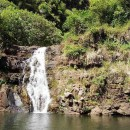 Waimea Valley Adventure Park - Waimea Falls