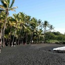 Punalu'u Beach Park - Big Island, Hawaii