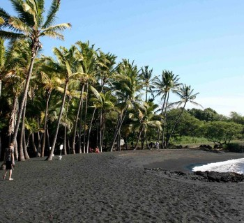 Punalu'u Beach Park - Big Island, Hawaii