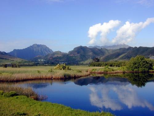 Kawainui Marsh - Oahu, Hawaii