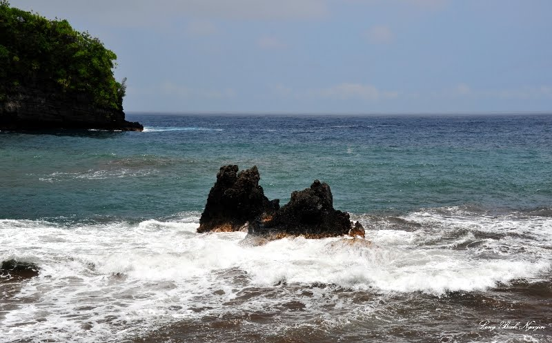Twin Rocks at Onomea Bay, Hawaii