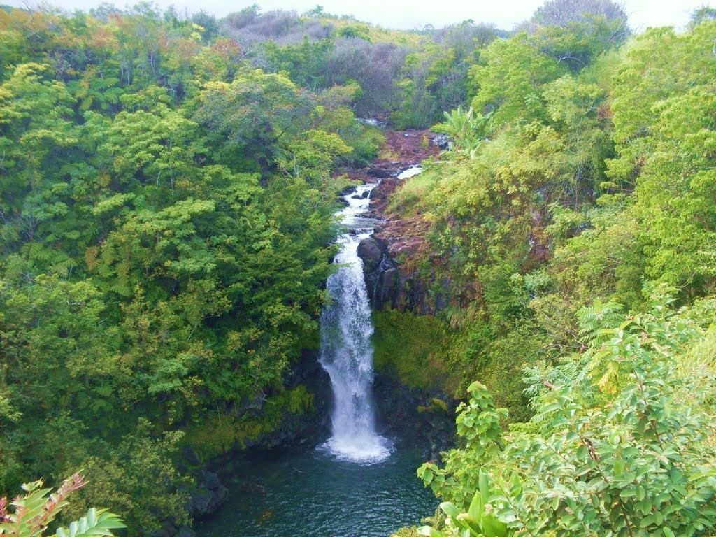 Kamaee Falls - Hakalau, Big Island, Hawaii
