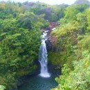 Kamaee Falls Hakalau Big Island Hawaii