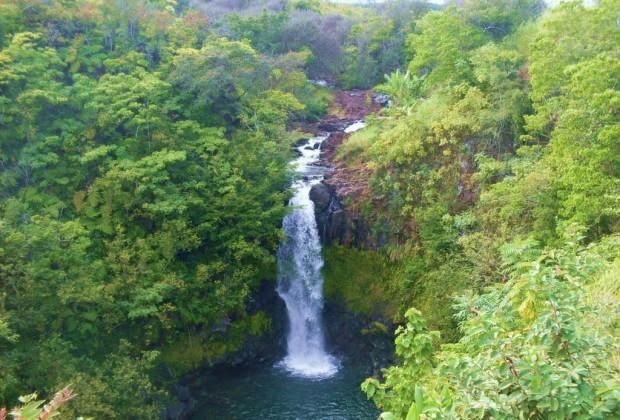 Kamaee Falls Hakalau Big Island Hawaii