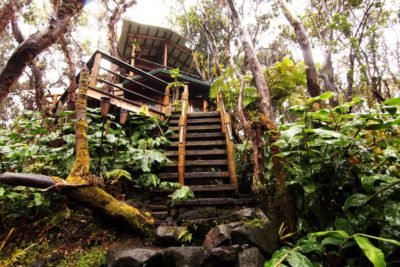 Kilauea Tree House - Hawaii Volcanoes National Park